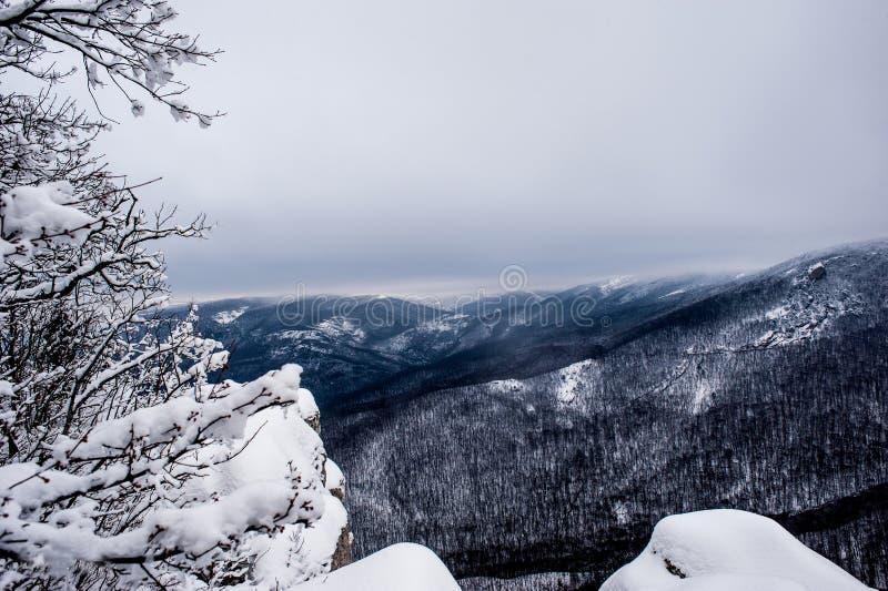 Paisaje del invierno de la montaña El sol es brillante Las montañas se pueden ver a través los árboles imagenes de archivo