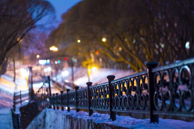 Paisaje del invierno de la noche en el parque de la ciudad Puente sobre el río Luces del parque sauces Verjas del arrabio  fotografía de archivo libre de regalías