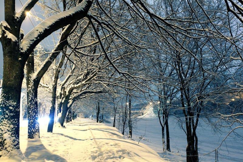 Paisaje del invierno de la noche en la ciudad imagen de archivo libre de regalías