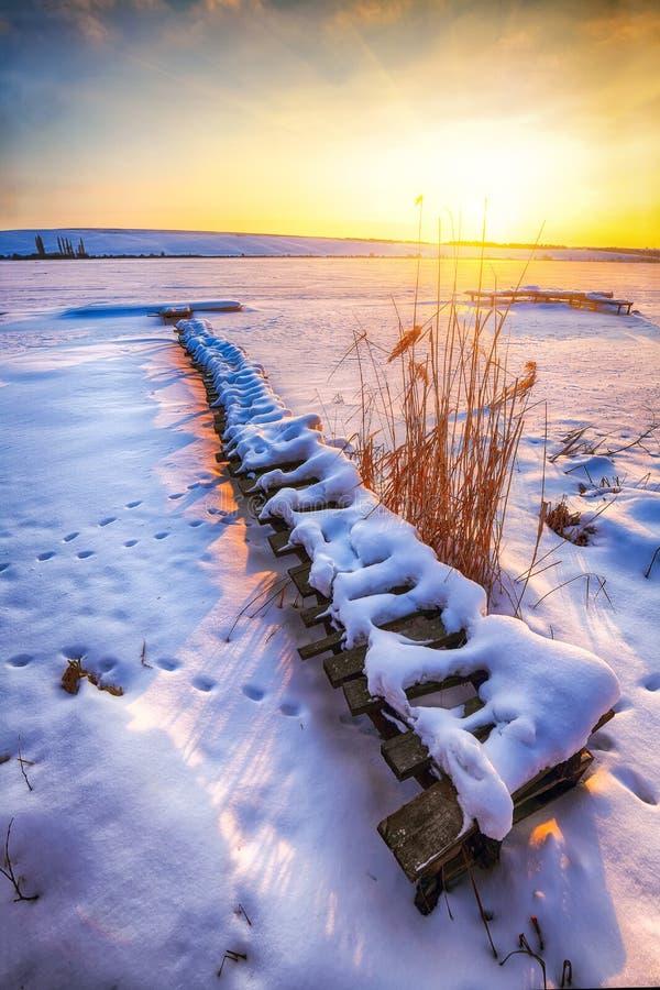 Paisaje del invierno de la tarde fotografía de archivo libre de regalías