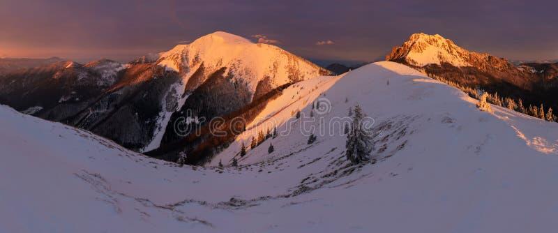Paisaje del invierno de las altas montañas de Tatra en el pequeño valle frío después de nevadas frescas Alto tiempo ventoso y frí fotos de archivo libres de regalías