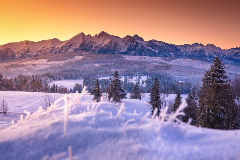 Paisaje del invierno de montañas nevosas en la salida del sol fotos de archivo