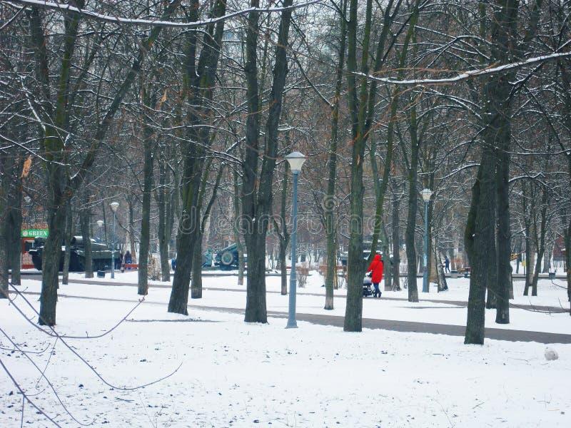 Paisaje del invierno en el parque de Kiev fotos de archivo libres de regalías