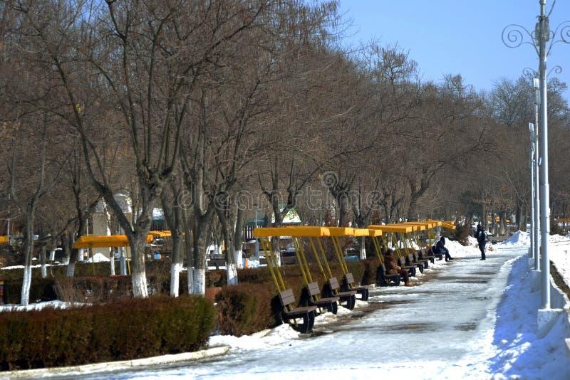 Paisaje del invierno en el parque 1 de la ciudad de Calarasi imagen de archivo libre de regalías