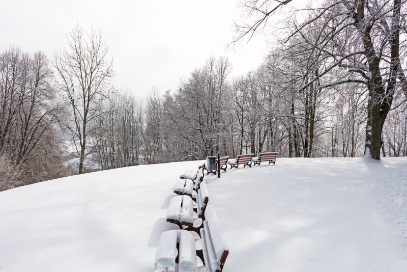 Paisaje del invierno Invierno en el parque nevoso con los bancos solos bajo nevadas del invierno Parque del invierno debajo de la imagen de archivo