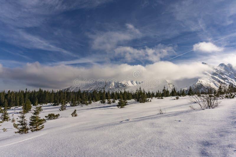 Paisaje del invierno en las montañas polacas de Tatra imagenes de archivo