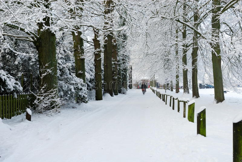 Paisaje del invierno en los Países Bajos fotografía de archivo libre de regalías