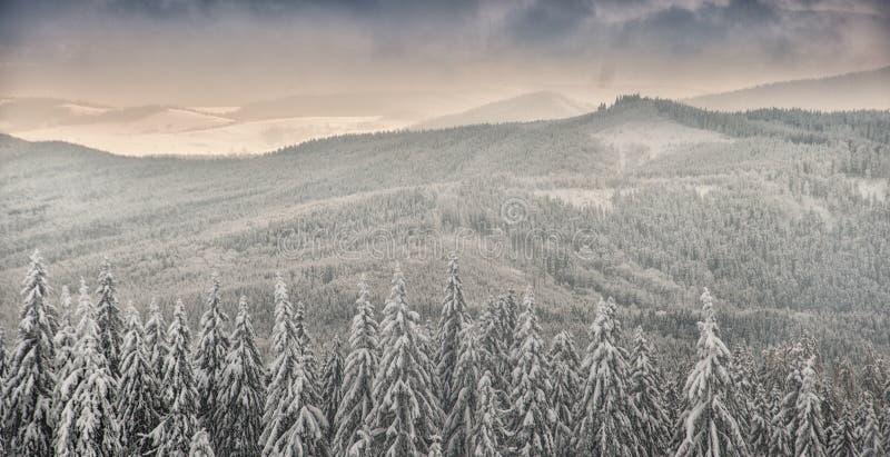 Paisaje del invierno en montañas beskidy polacas fotografía de archivo libre de regalías