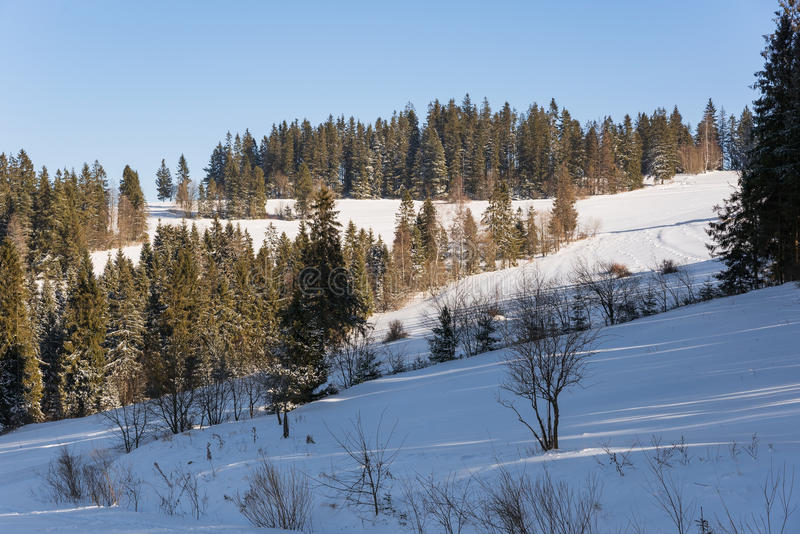 Paisaje del invierno en montañas polacas foto de archivo