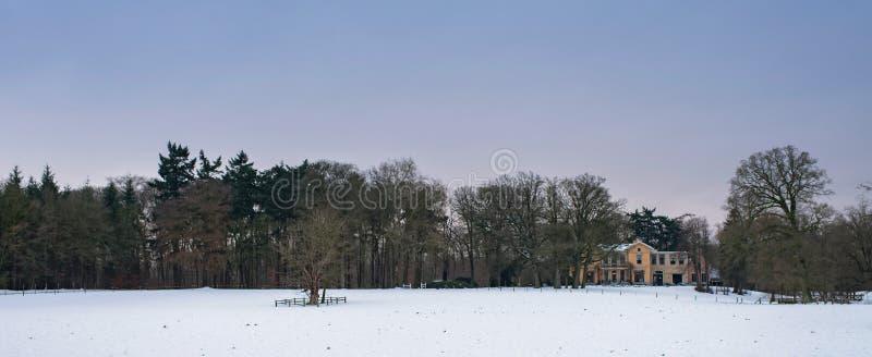 Paisaje del invierno en nieve con los árboles y la casa señorial desnudos del país imágenes de archivo libres de regalías