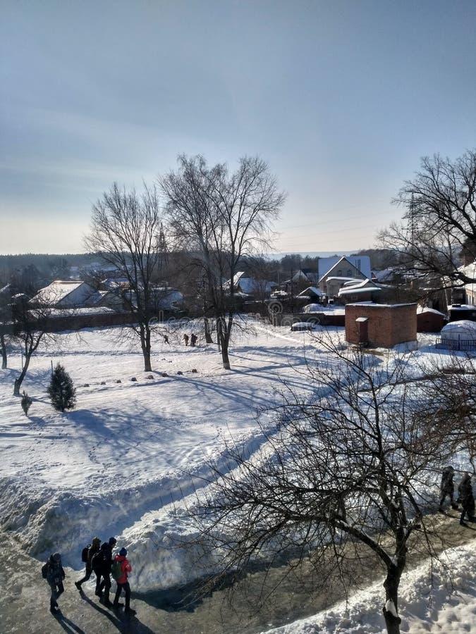 Paisaje del invierno en Ucrania fotos de archivo libres de regalías