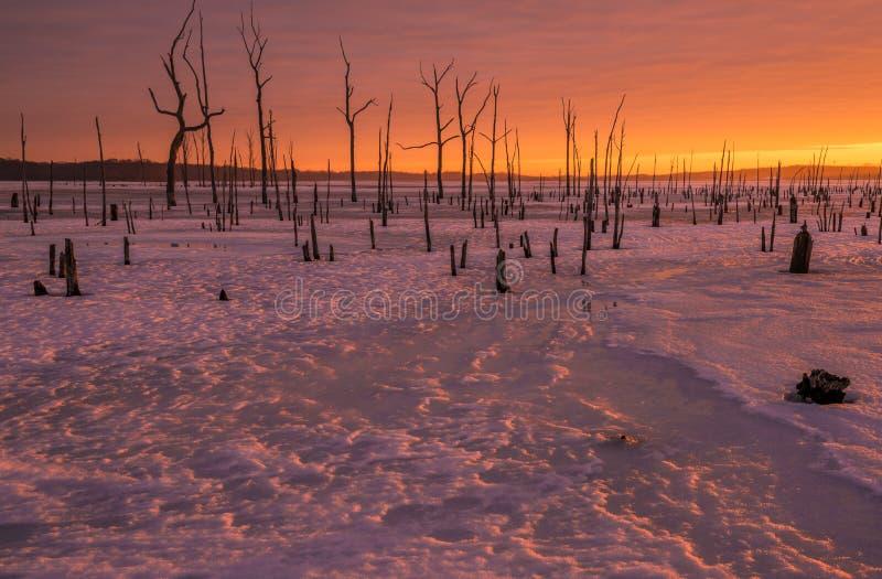 Paisaje del invierno del fuego y del hielo imagen de archivo libre de regalías