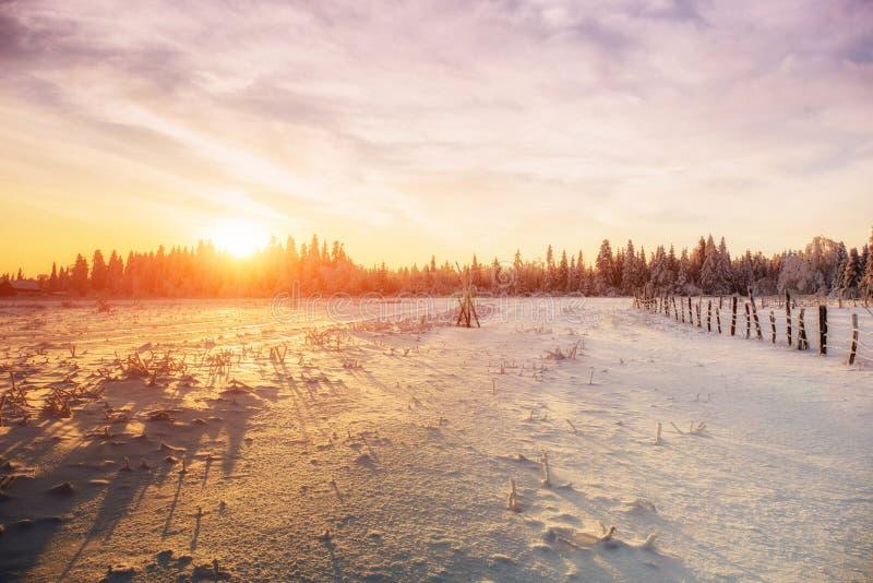 Paisaje del invierno Pueblo de montaña en los Cárpatos ucranianos fotos de archivo