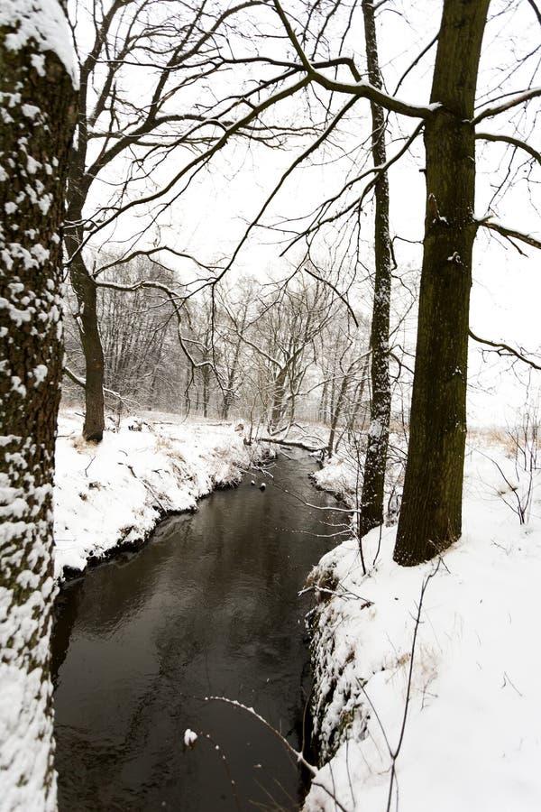 Paisaje del invierno, río en la nieve imágenes de archivo libres de regalías