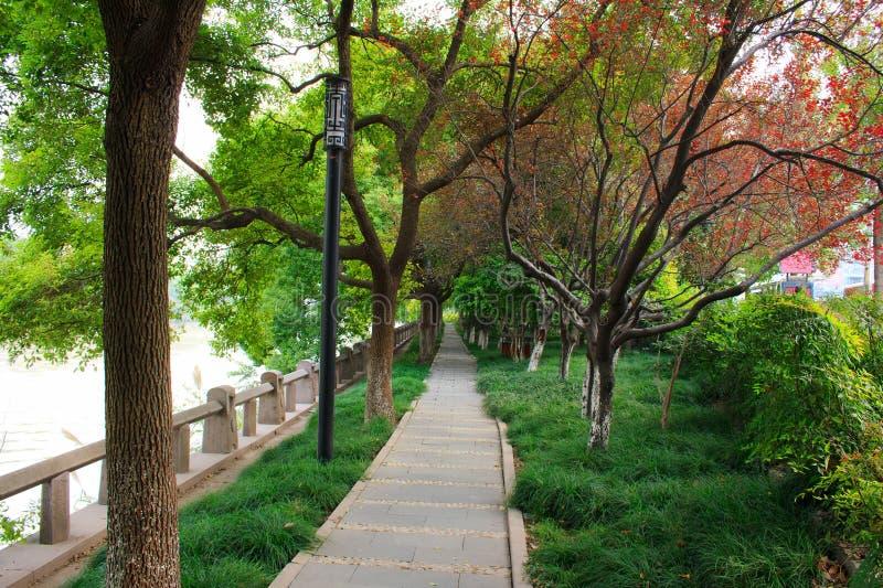 Paisaje del lago del oeste. Hangzhou. China. fotos de archivo