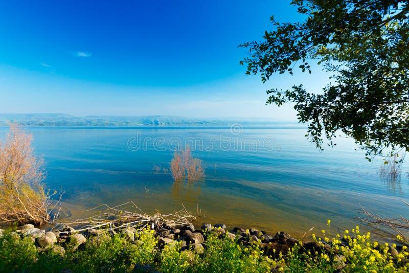 Paisaje del lago Kinneret - mar de Galilea imagen de archivo libre de regalías