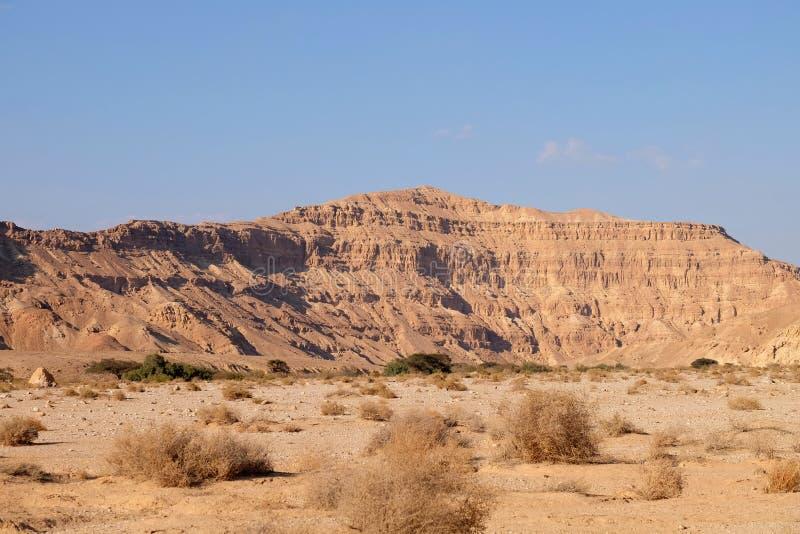 Paisaje del lecho de un río seco del desierto del Néguev imágenes de archivo libres de regalías
