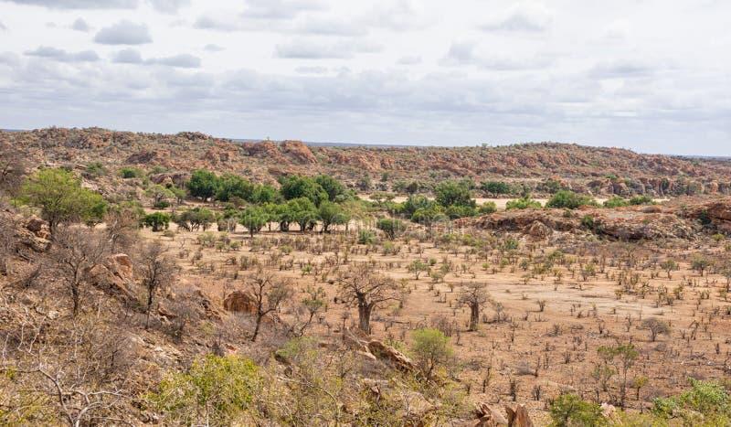 Paisaje del Limpopo imagen de archivo