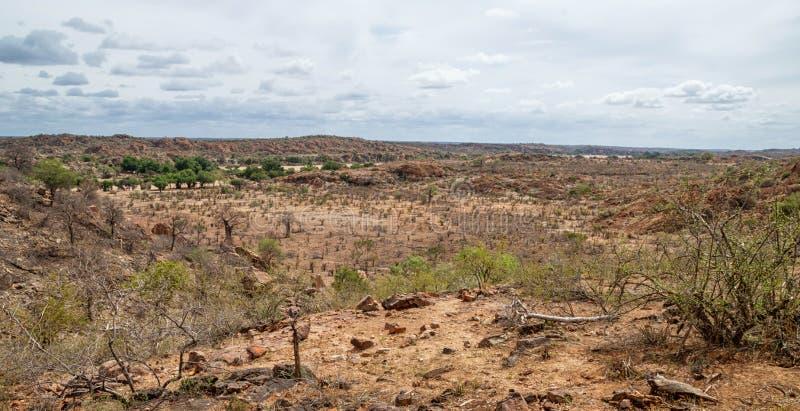 Paisaje del Limpopo fotos de archivo