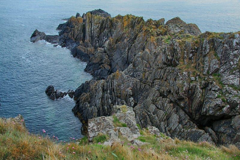 Paisaje del mar de acantilados, cerca de Eyemouth, de Northumberland y de las fronteras escocesas imágenes de archivo libres de regalías
