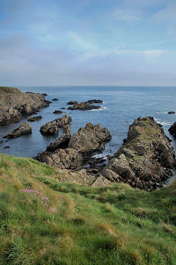 Paisaje del mar de acantilados, cerca de Eyemouth, de Northumberland y de las fronteras escocesas fotos de archivo libres de regalías