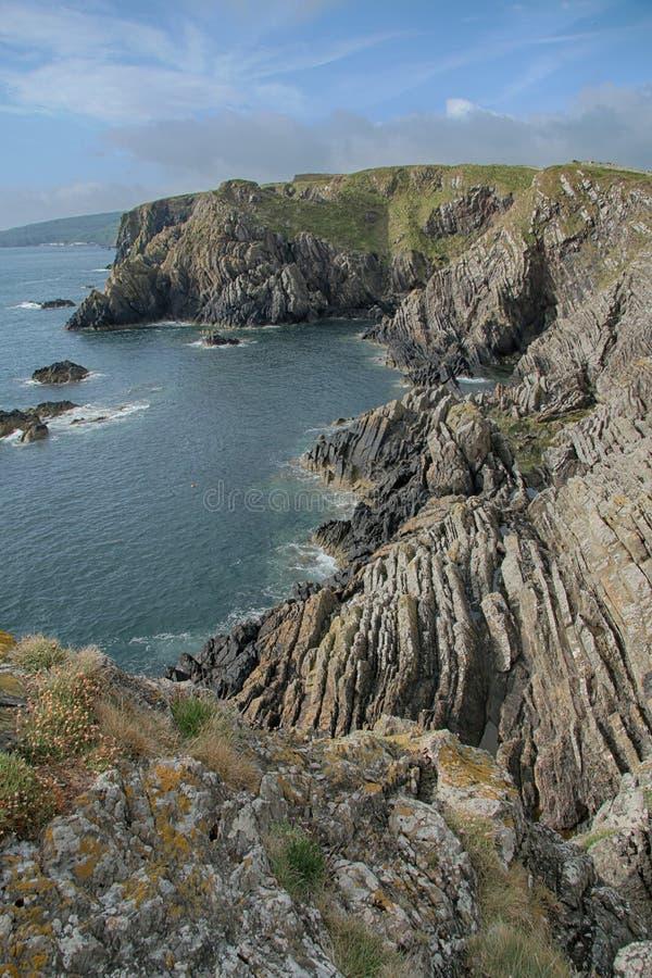 Paisaje del mar de acantilados, cerca de Eyemouth, de Northumberland y de las fronteras escocesas imagen de archivo libre de regalías