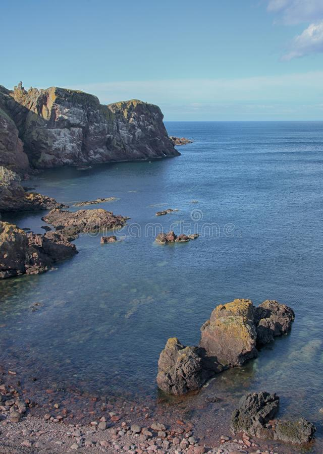 Paisaje del mar de acantilados, cerca de Eyemouth, de Northumberland y de las fronteras escocesas imagen de archivo