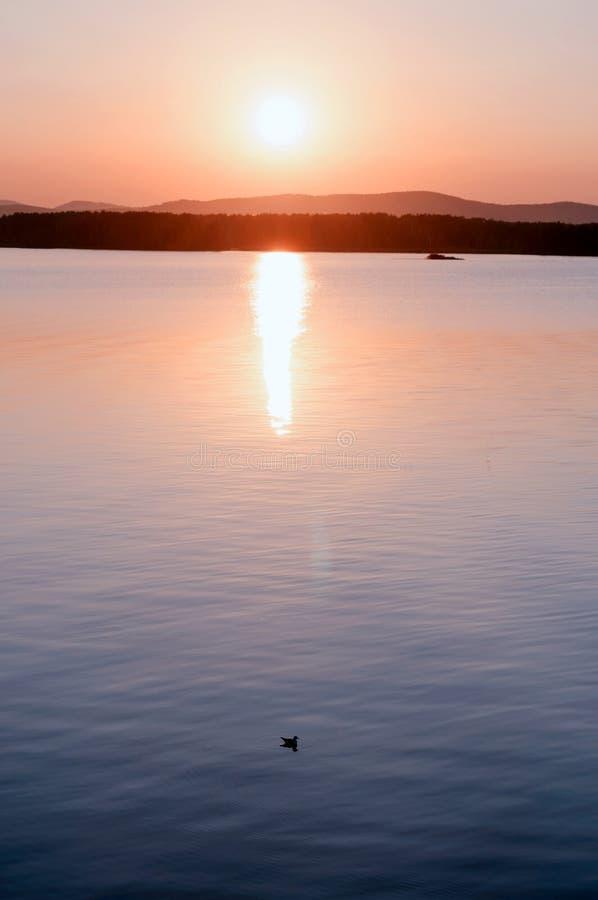 Paisaje del mar Escena soleada del agua del verano Puerto del mar en sol de igualaci?n suave imagen de archivo libre de regalías