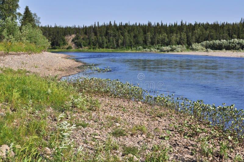 Paisaje del norte del río imagen de archivo libre de regalías