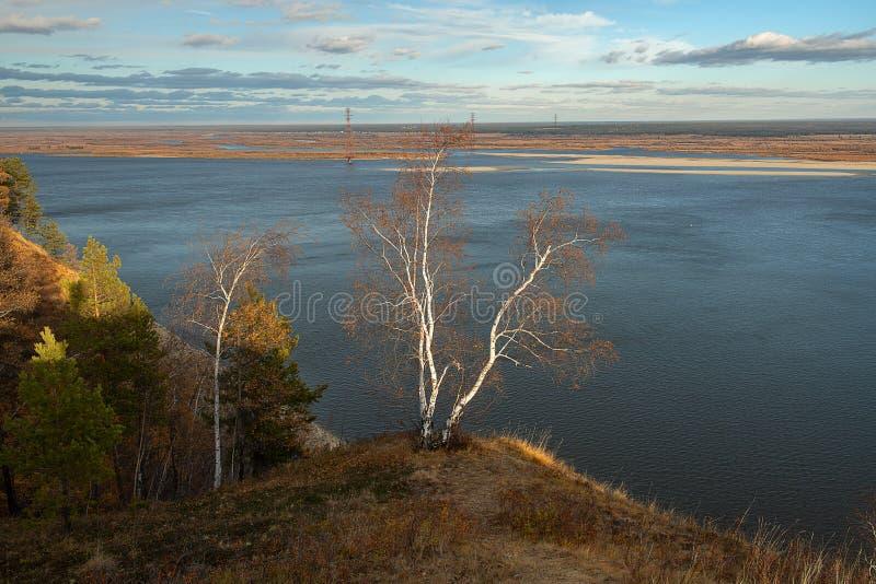 Paisaje del otoño con árboles y un río ancho foto de archivo
