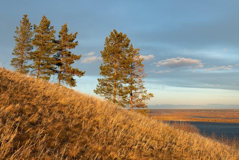 Paisaje del otoño con árboles y un río ancho fotografía de archivo