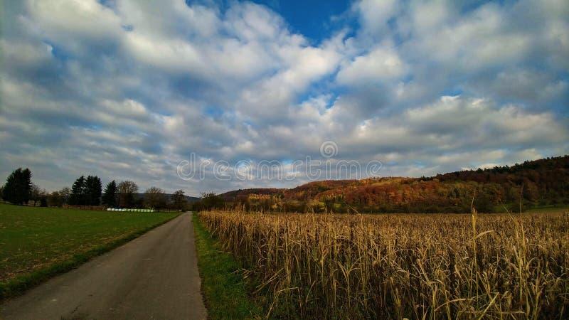 Paisaje del otoño con el gran cielo de las nubes fotos de archivo libres de regalías