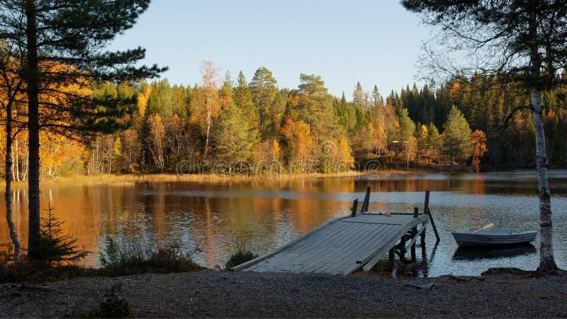 Paisaje del otoño con el lago del bosque foto de archivo