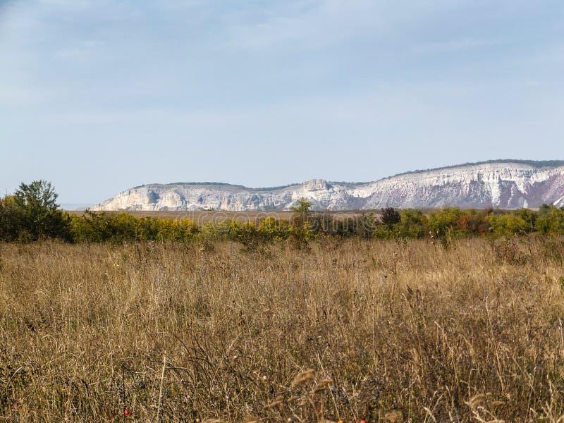 Paisaje del otoño con la hierba seca en primero plano, línea de plantas verdes y cuestas blancas borrosas del soporte Ak-Kaya fotografía de archivo