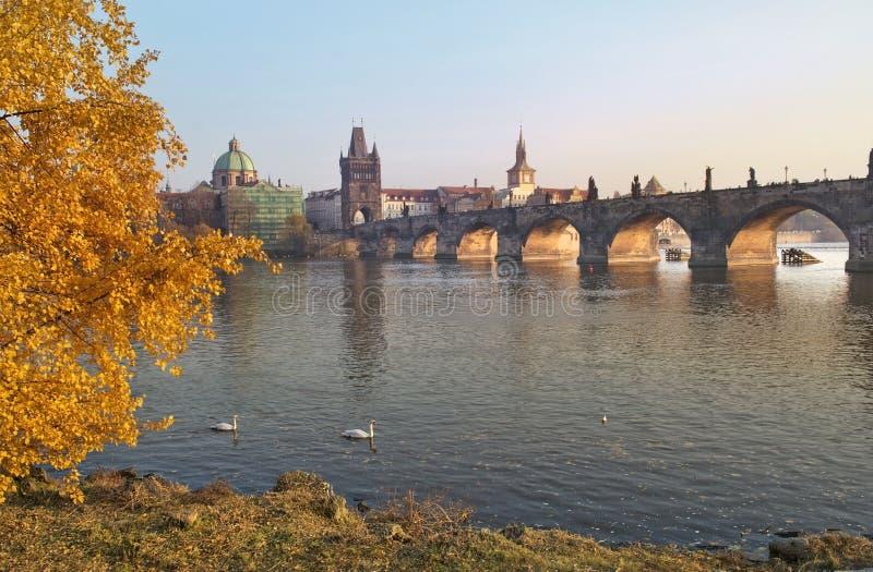 Paisaje del otoño con las vistas del puente de Charles en Praga fotografía de archivo