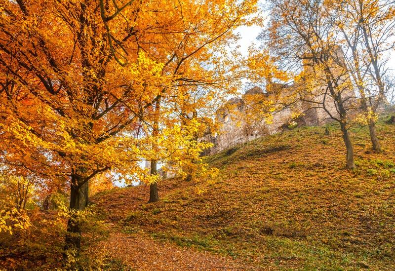 Paisaje del otoño con ruina del castillo medieval el hrad de Povazsky foto de archivo libre de regalías