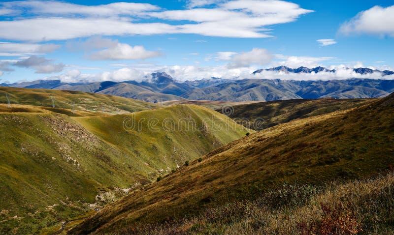 Paisaje del otoño de la meseta de Qinghai Tíbet foto de archivo