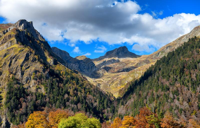 Paisaje del otoño de la montaña con el bosque colorido imagenes de archivo