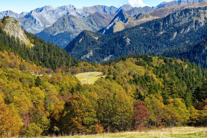 Paisaje del otoño de la montaña con el bosque colorido imagen de archivo