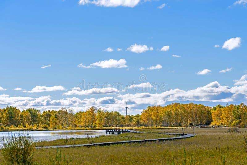 Paisaje del otoño del lago the Sun imagen de archivo libre de regalías