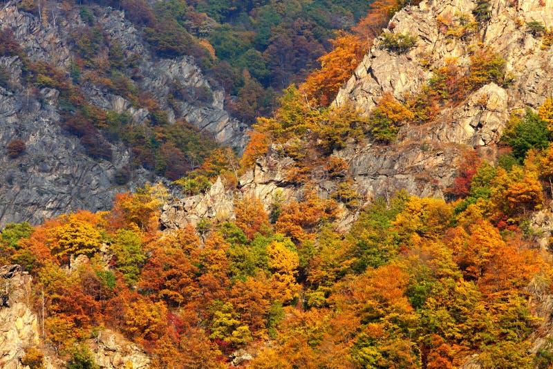Paisaje del otoño en las montañas de Mehedinti foto de archivo