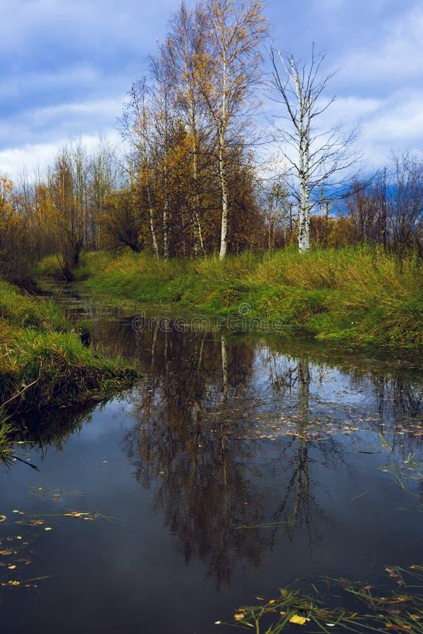 Paisaje del otoño en un río pesadamente resistido fotografía de archivo
