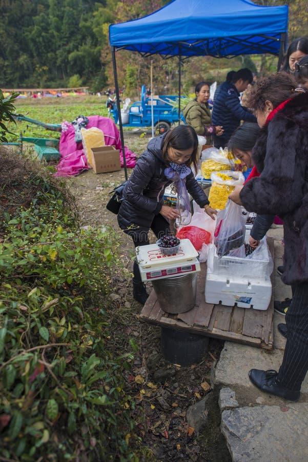 Paisaje del otoño del pueblo del hongcun, condado yixian, huangshan, Anhui fotografía de archivo