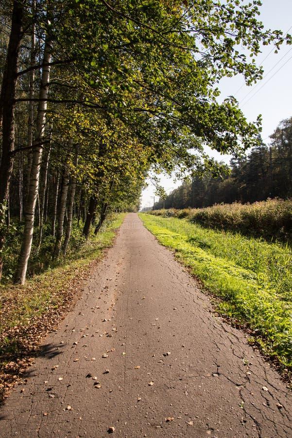 Download Paisaje Del País Con Los Campos Y El Cielo Azul Foto de archivo - Imagen de árboles, horizonte: 44851876