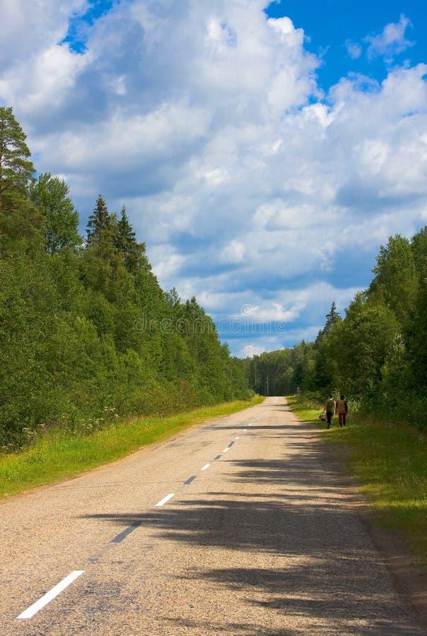 Paisaje del país de la tierra del norte imagen de archivo libre de regalías