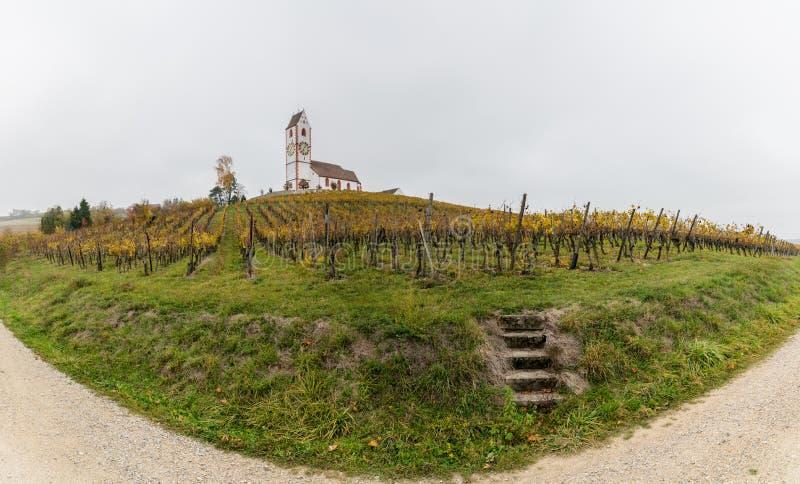 Paisaje del panorama con los viñedos de oro e iglesia y escaleras blancas del país leadiing del camino de la grava a la vid fotografía de archivo