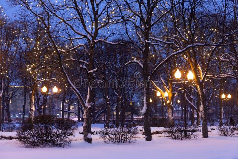 Paisaje del parque de la tarde del invierno árboles, decoración de la Navidad y luces de calle nevados imagenes de archivo
