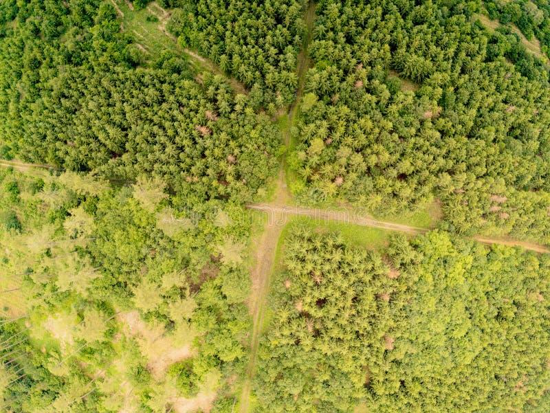 Paisaje del parque de naturaleza en Brno desde arriba, República Checa imagen de archivo