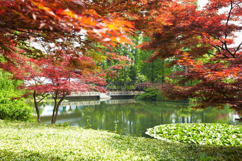 Paisaje del parque de naturaleza, Hangzhou fotos de archivo libres de regalías