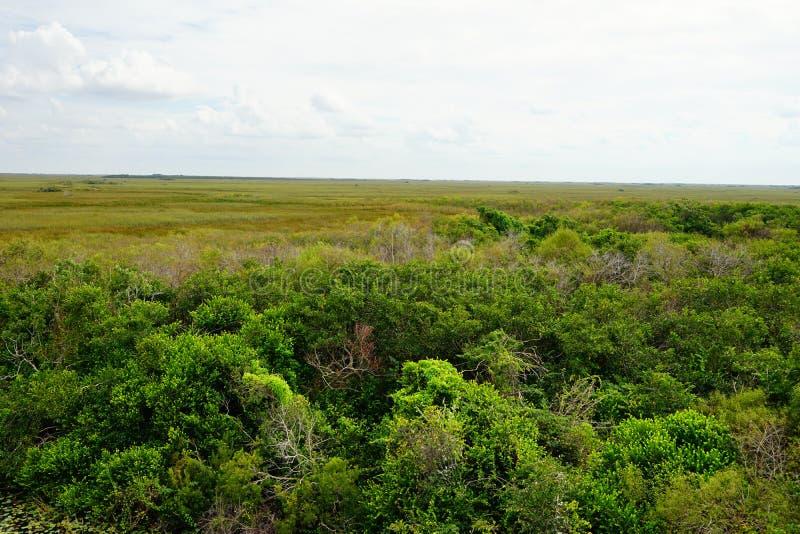 Paisaje del parque nacional de los marismas imagenes de archivo